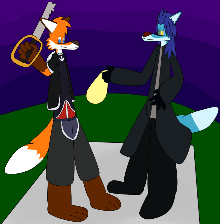 Mike and Slush as Sora and Xemnas from KHII