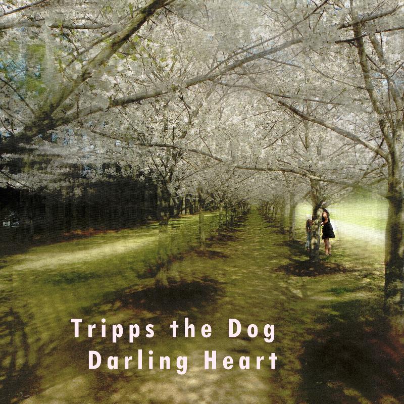 Darling Heart