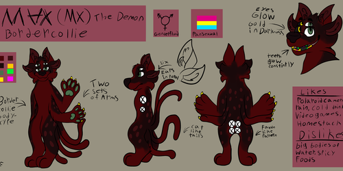 MX the demon border collie ref