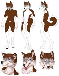 Reference Sheet : Kenta