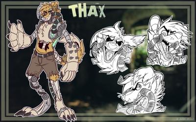 THAX Character Sheet