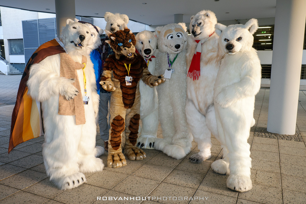[EF20] Draggy among polar burrrs