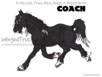 Coach: Deoblo's Sire