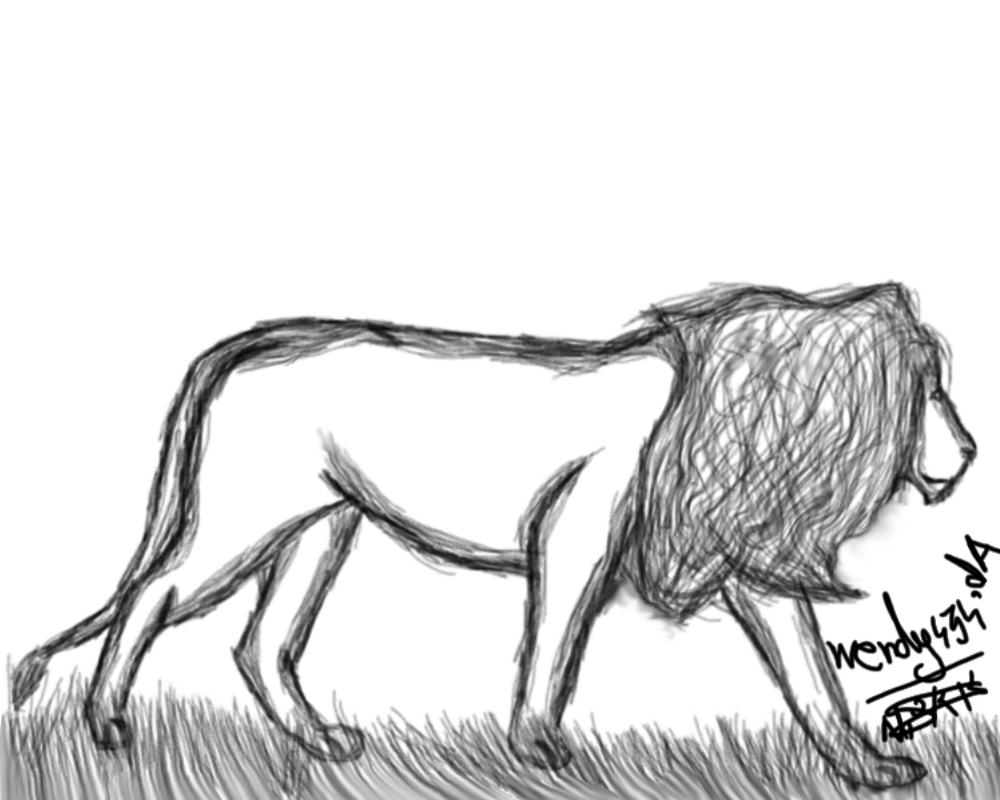 Most recent image: Lion sketch