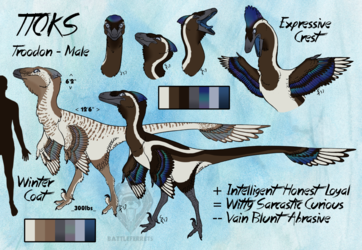 Ttoks Reference Sheet