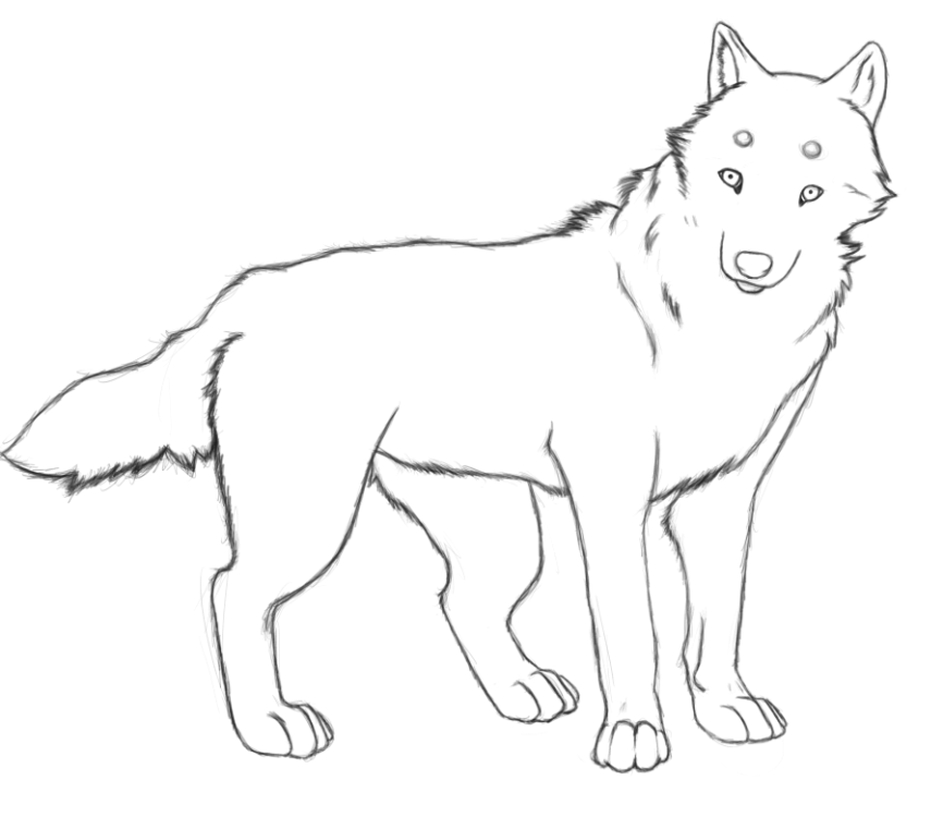 Картинки бурый волк для детей