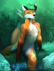 Lake fox