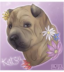 .: Katou [Commish-refuge]