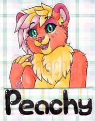 [Badge] Peachy AC 2016