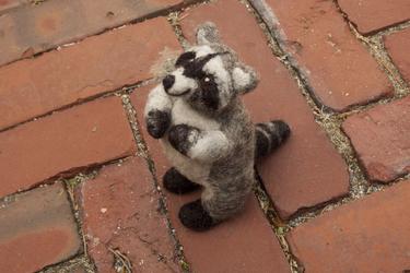 Cheer-up Raccoon