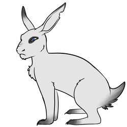 Watership down infected me(2)