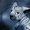 avatar of Danji-Isthmus