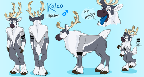 Kaleo the reindeer~