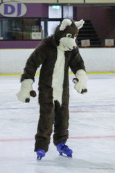Furries on Ice 2018: Cookie 1