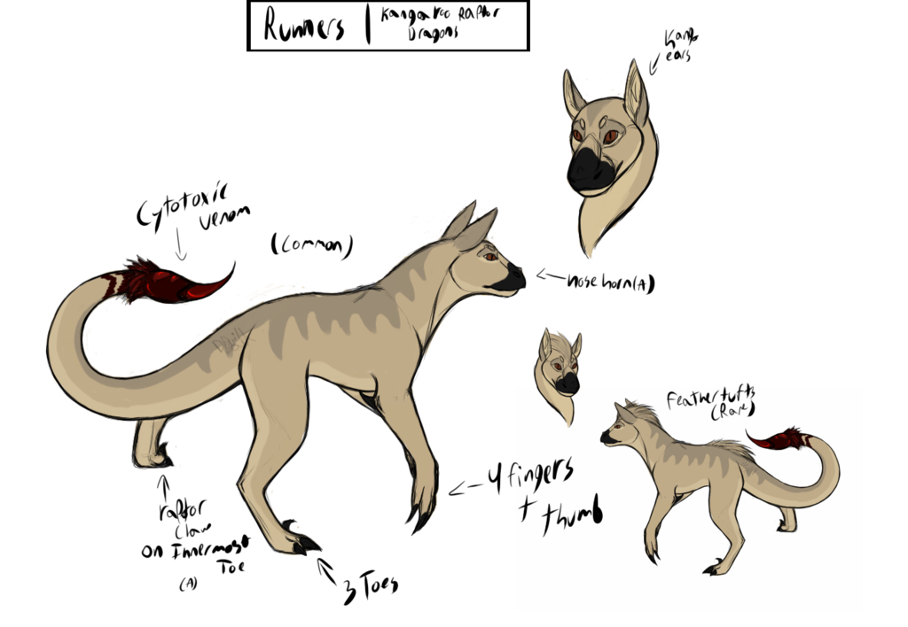 Runner species sheet