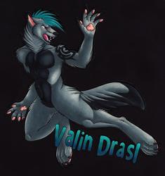 VALIN Badge