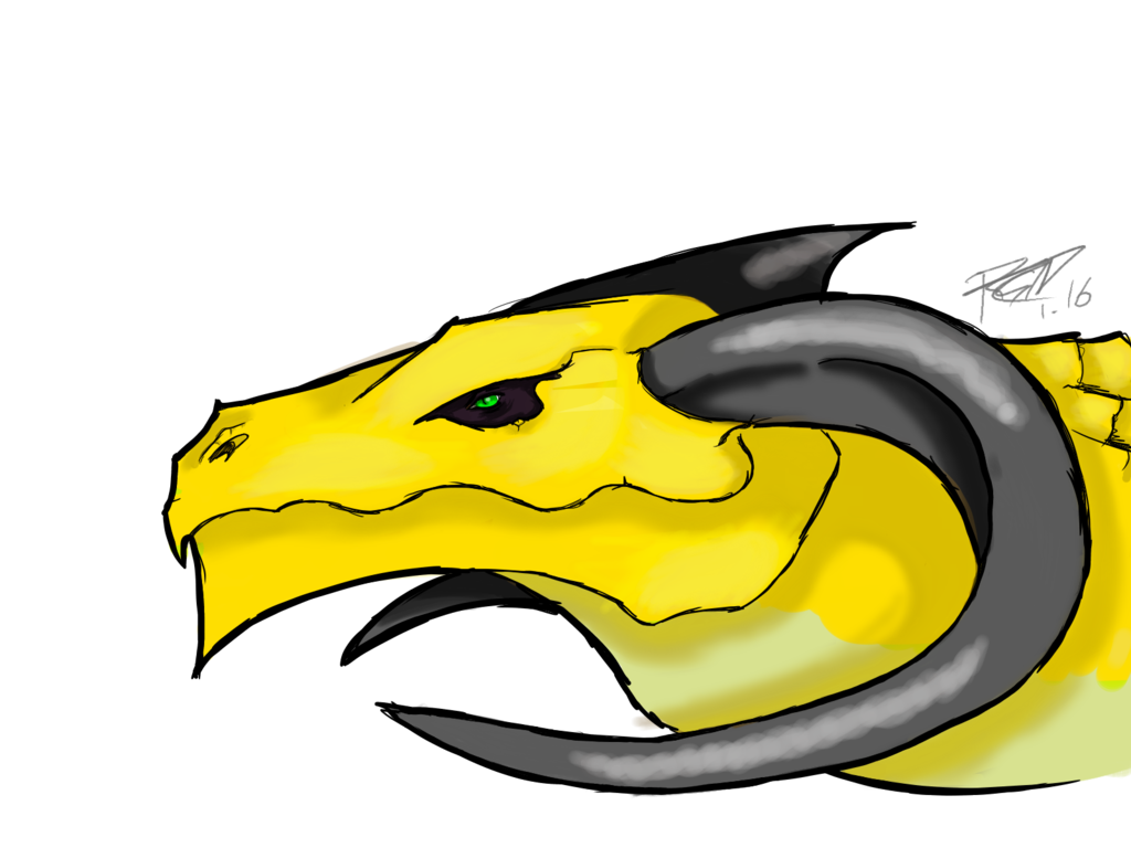 Seraph - Headshot