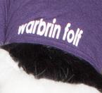 FurJAM: Warbrin