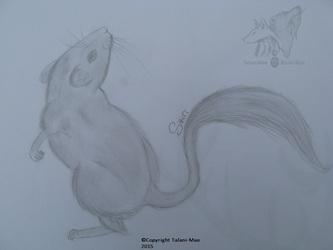 Sviiri Mouse
