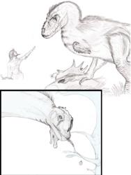 Dinosaur Sketches / Warmup