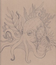 Octopus Seabed