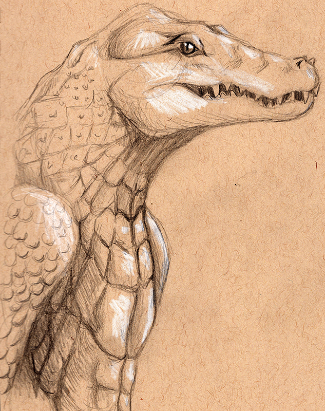 Most recent image: Toned Crocodile