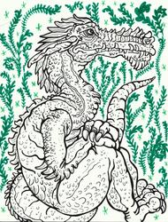 Dragon and Ferns