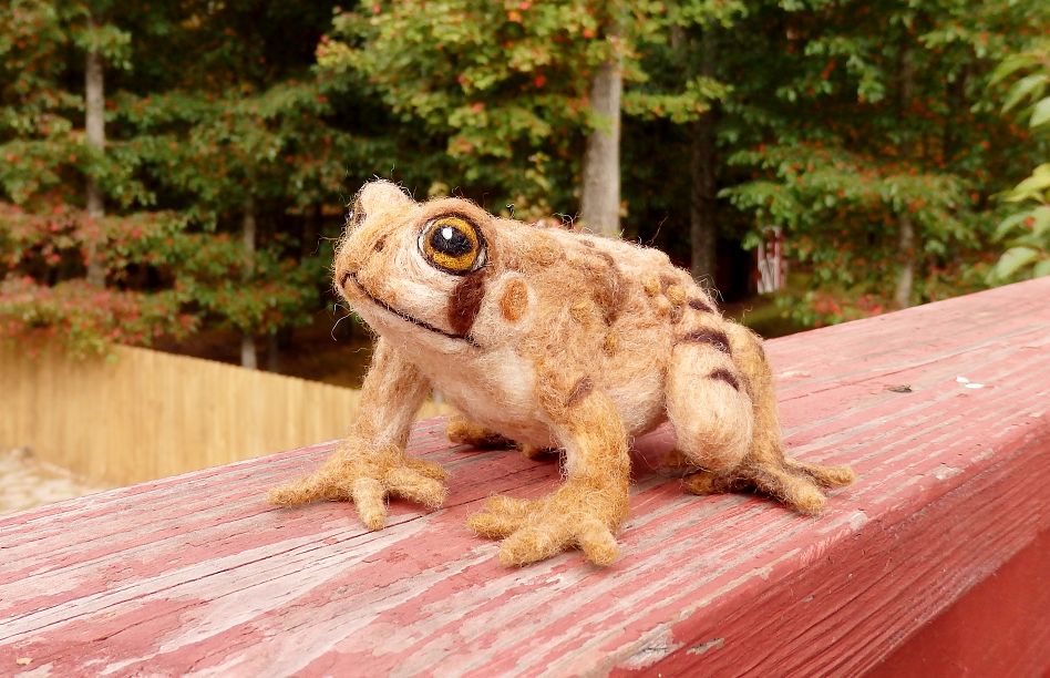 Needle Felted Eastern American Toad