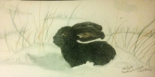 The Ebony Rabbit