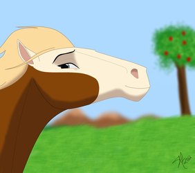 Indian Mare