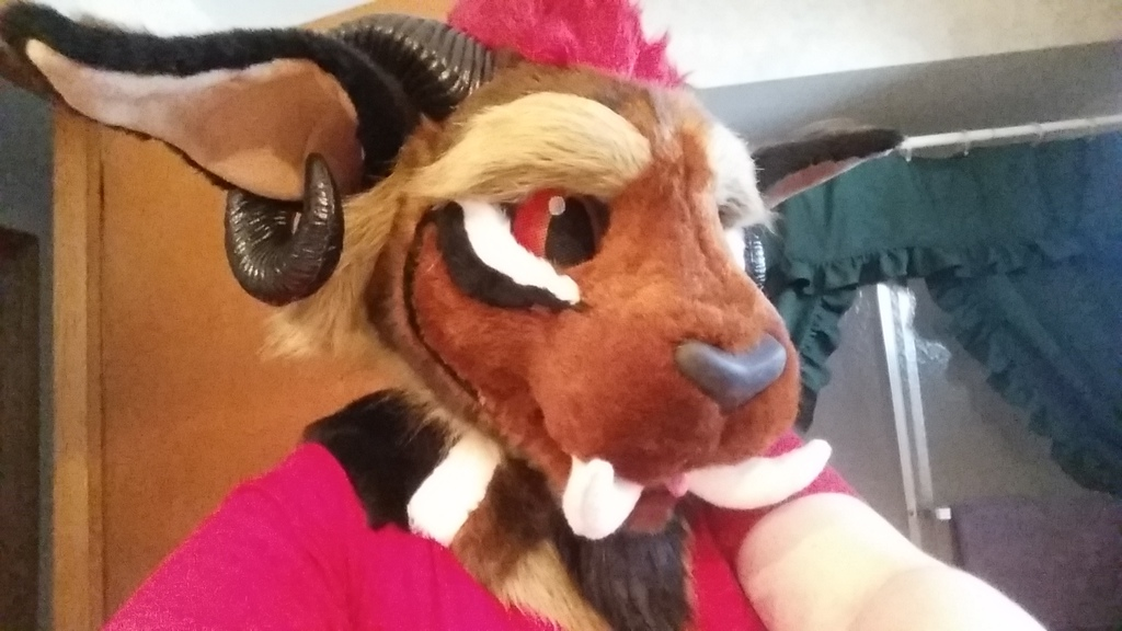 Most recent image: Toony Kurgan head