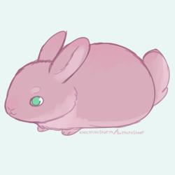 Tiny Bun