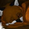 avatar of Bakira