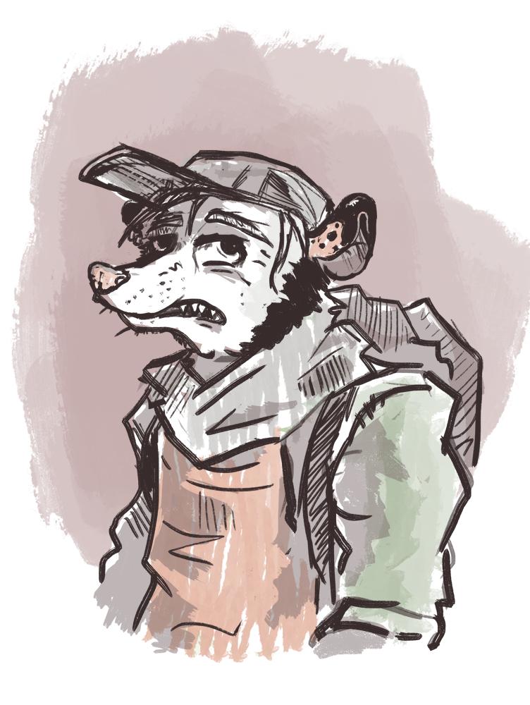 sketch - opossum