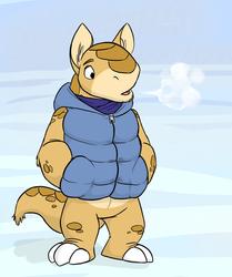 Rio Puffy Vest