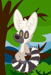A Redra Lemur!