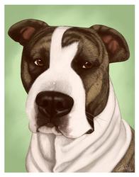 Jake Portrait Commission