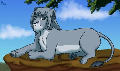Lioness Miaya