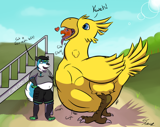The Chocobo Express - by Tanio
