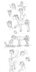 July Pony Dump