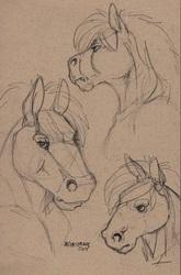 Horse doodles