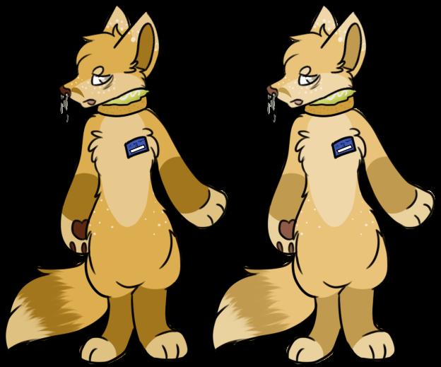 Chick-Fox-A