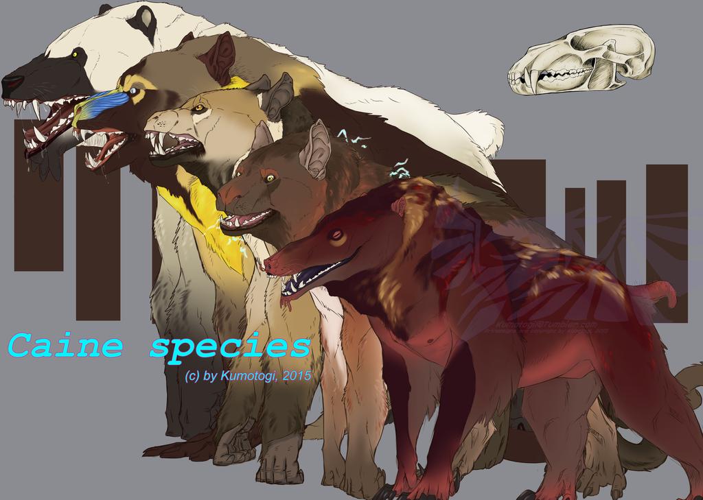 Caine Species set1