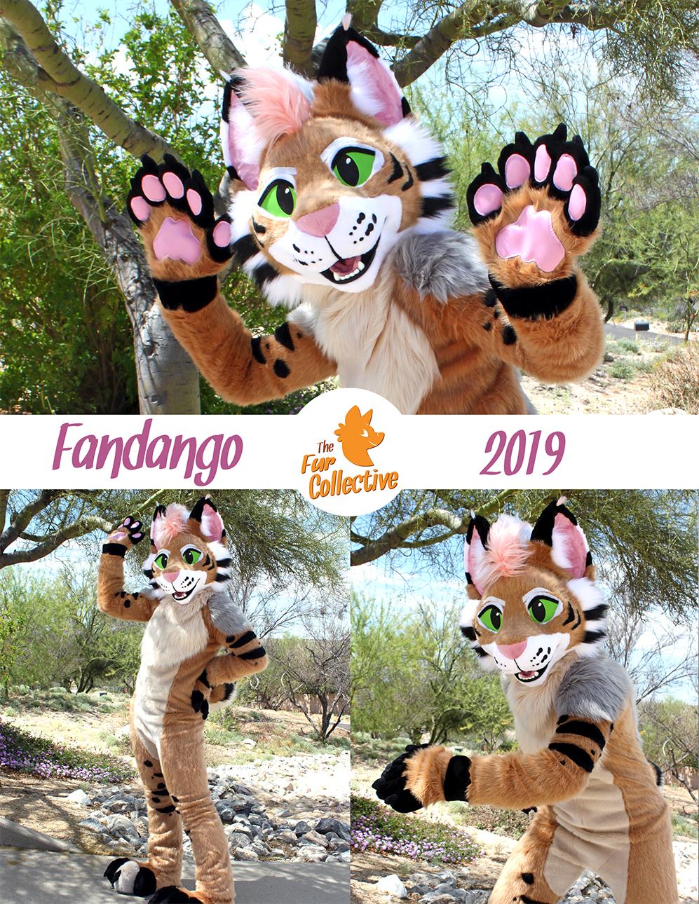 fandango the Bobcat!