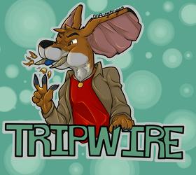 #4: Tripwire $15 dollar iron artist Badges!