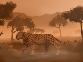 Felis Pardus - Savannah Background