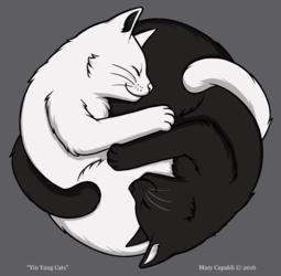 Yin Yang Cats [NEW DESIGN!]