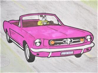 Tough guys DRIVE pink!