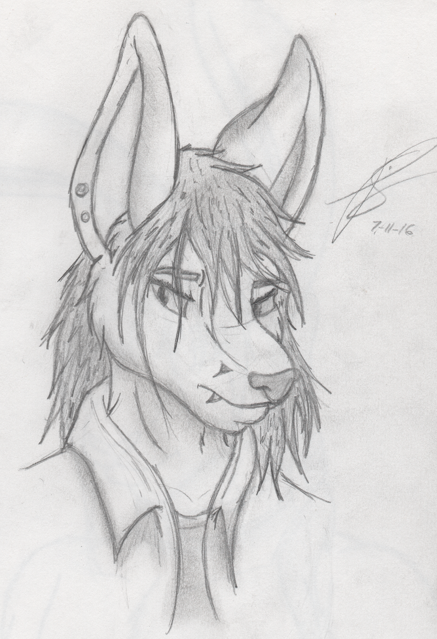 Headshot #1: Random Fox