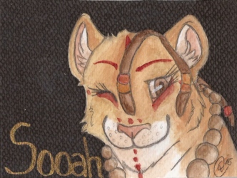 Badge for Soaah